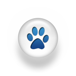 102-Paw-print-blue-button-300x300