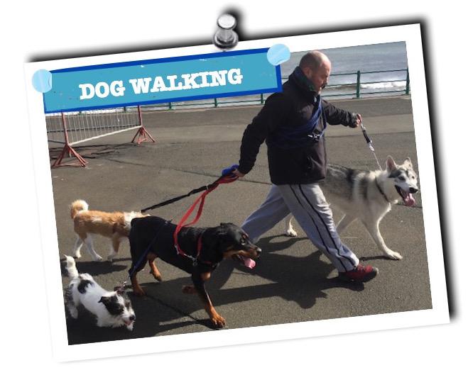 dog walking button1